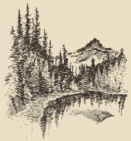 brook: Hand drawn landscape with lake and fir forest vintage vector illustration