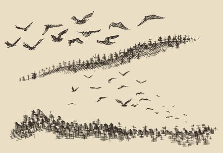 creek: Hand drawn landscape flying birds fir forest vintage