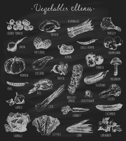 naturally: Collection of hand drawn vegetables on chalkboard blackboard high detailed vector illustration sketch engraved style menu design