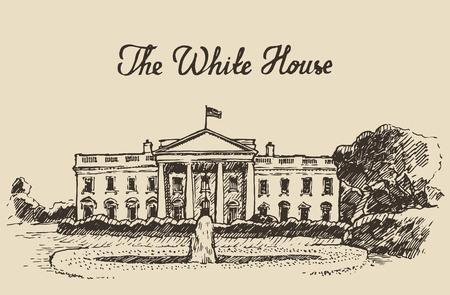 white house: White House in Washington DC engraved vector illustration hand drawn sketch Illustration