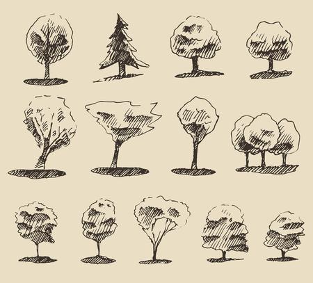 elm: Trees sketch set, vintage vector illustration, engraved style, hand drawn