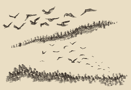 birds: Hand drawn landscape flying birds fir forest vintage