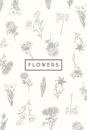 design background: Trendy collection of beautiful hand drawn flowers, floral set collection of design elements isolated illustration on white background Illustration