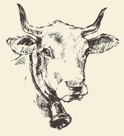 Kuh-Kopf mit Glocke niederländischen Rinderrasse Weinleseillustration eingraviert Retro-Stil Hand gezeichnete Skizze