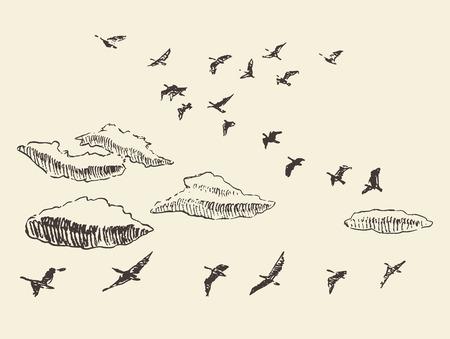 Hand gezeichnet fliegenden Vögel in den Himmel mit Wolken Zugvögel Vintage-Vektor-Illustration Standard-Bild - 46376104
