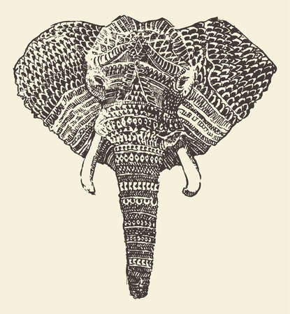 indian art: Ethnic elephant head engraving style vintage illustration hand drawn sketch Illustration