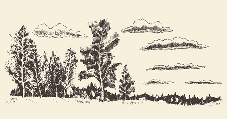 tree  forest: Hand drawn landscape forest meadow clouds vintage vector illustration