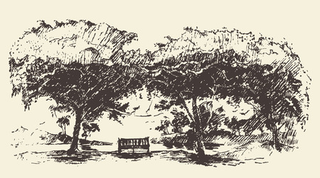 bench: Beautiful romantic illustration of tree with bench hand drawn sketch