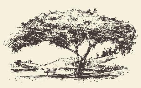 Mooie romantische illustratie van de boom met getrokken bank hand schets Stock Illustratie