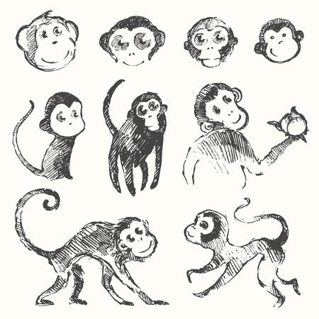 chinese cartoon: Set of funny cute monkeys monkey year Chinese zodiac symbol vector illustration hand drawn sketch