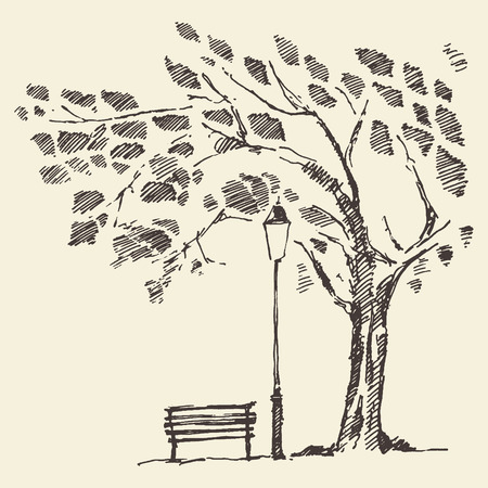 garden bench: Beautiful romantic illustration of tree with bench and lantern hand drawn sketch