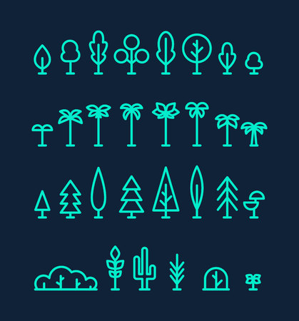 Set kinds trees palms fir spruces bushes cactus linear