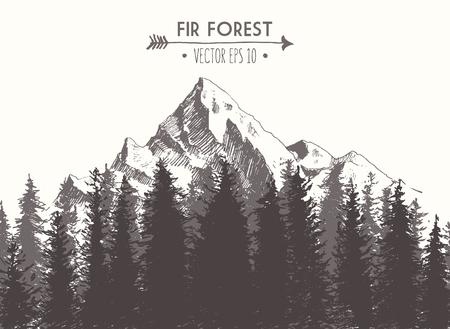 Tannenwald Hintergrund mit Konturen der Berge Hand gezeichnet Vektor-Illustration Vektorgrafik