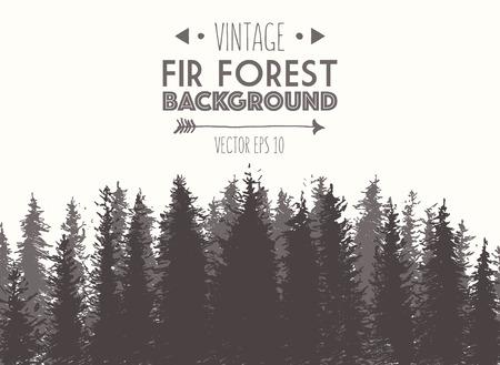 arbres silhouette: Fir fond de la forêt Illustration