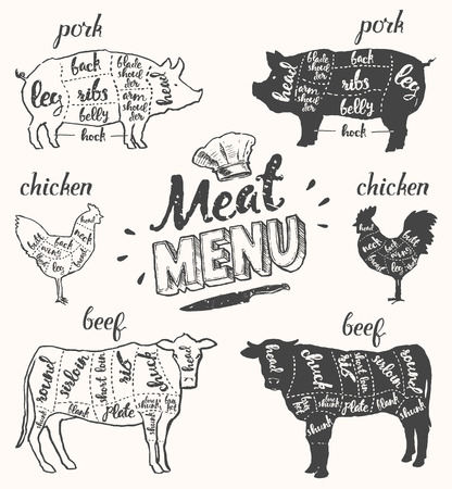 Vintage Restaurant Fleisch-Menü-Vorlage. Amerikanische Schema Schweinefleisch Schnitte, Teile von Hühnern und Rindfleisch schneidet, von Hand gezeichnete Illustration.