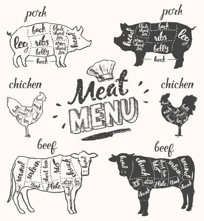 zeichnen: Vintage Restaurant Fleisch-Menü-Vorlage. Amerikanische Schema Schweinefleisch Schnitte, Teile von Hühnern und Rindfleisch schneidet, von Hand gezeichnete Illustration.