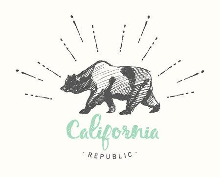 vintage drawing: California Republic vintage emblem, hand drawn vector illustration, sketch