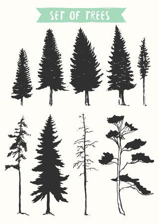 dibujado a mano vector silueta de los árboles de pino y abeto