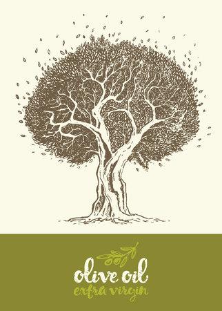 disegnata a mano illustrazione vettoriale di etichette d'epoca albero di oliva per l'olio d'oliva