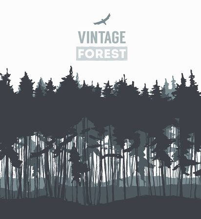 pine trees: Pine forest design template hand drawn vector illustration Illustration