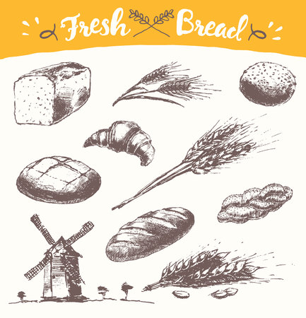 grain fields: Set of fresh bread Hand drawn illustration of bread long loaf baguette croissant wheat wind mill vintage sketch