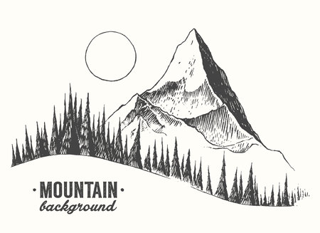 Fir forest background with contours of the mountains hand drawn vector illustration Фото со стока - 60630056