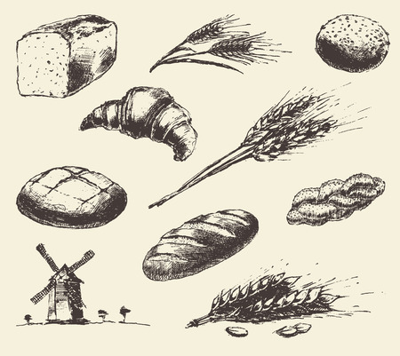 long loaf: Set of fresh bread. Hand drawn illustration of bread long loaf baguette croissant wheat wind mill. Vector vintage sketch