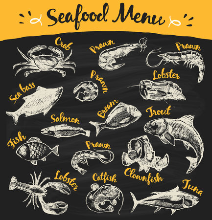seafood background: Collection of hand drawn seafood and fish vector illustration sketch engraved style