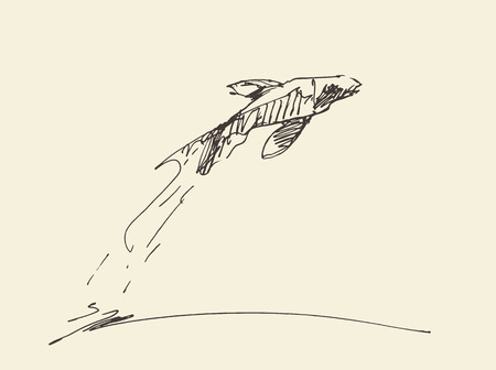 sketch out: Sketch of a fish, jumping out from water. Vector illustration Illustration