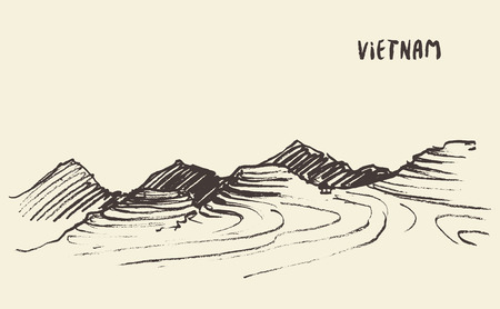 terraced: Landscape view of rice fields Mu Cang Chai, Vietnam, illustration, sketch