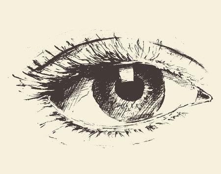 Vintage illustration of an eye hand drawn sketch.
