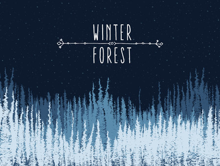 snow forest: Beautiful winter night forest background. Christmas holidays landscape with falling snow. Vector illustration Illustration