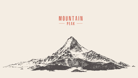 Vector illustration of a mountain peak with pine forest, engraving style, hand drawn Illusztráció