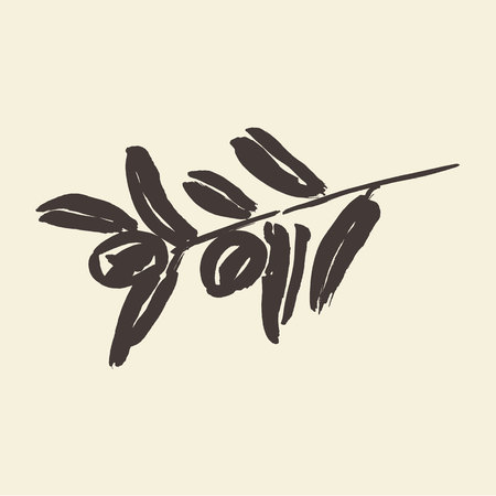 ink illustration: Ink hand drawn olive tree branches, vector illustration