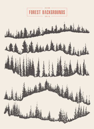 Pine forest pattern, vector illustration, hand drawn sketch