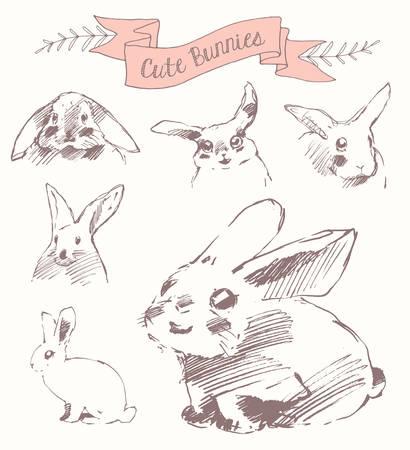 draw a sketch: Set cute bunnies easter rabbits vector draw sketch