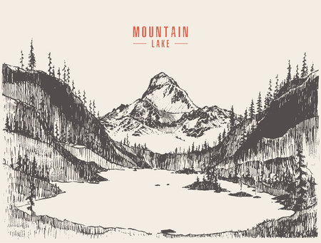 Drawn mountain landscape pine forest lake vector
