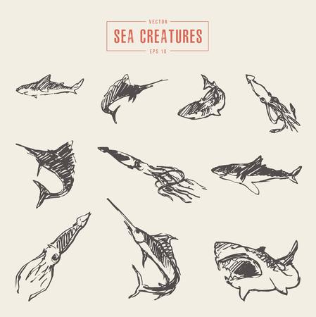 Set realistic sea creatures drawn vector sketch