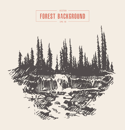 Illustrazione d'annata di bella cascata del fiume in una foresta dell'abete, disegnata a mano, schizzo.