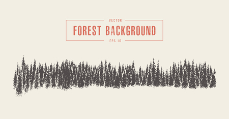 Pine forest background, vector drawn, sketch