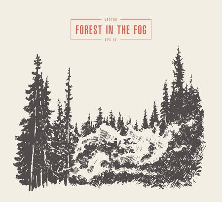 Misty fog pine forest mountain vector drawn sketch Vektoros illusztráció