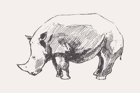 Rhinoceros hand drawn vector illustration a sketch Banque d'images - 129786124