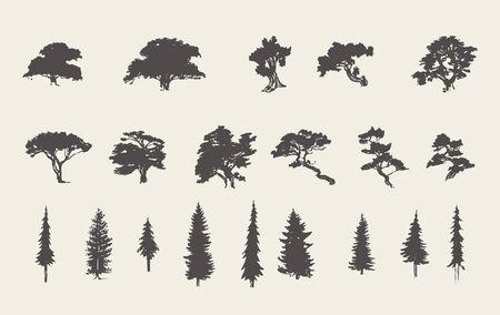 Set silhouettes trees pine fir cedar vector sketch Vetores