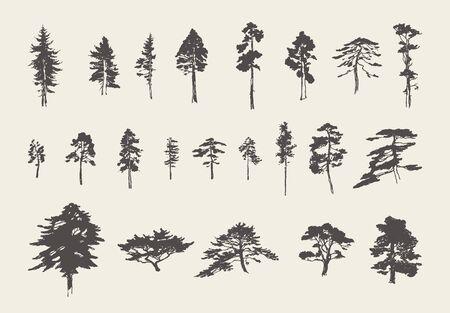 Set silhouettes trees pine fir cedar vector sketch Vettoriali