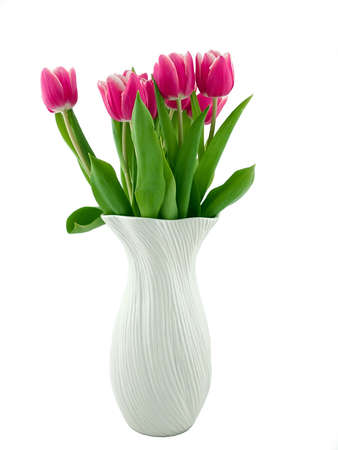 Tulips in a Vase Isolated on a White photo