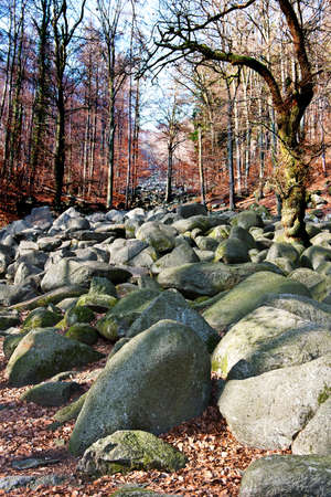 a heap of stones in a mystical forest Stock Photo
