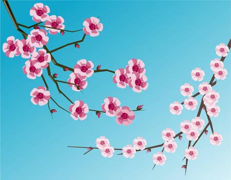 Cherry blossoms Ilustração
