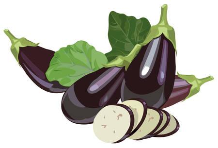 Illustration of realistic eggplants with leaves and slices Ilustração