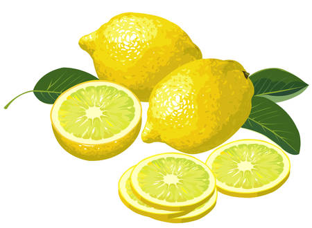 Lemon with slices Illustration