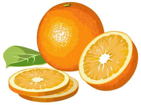 Oranges with slices Illustration